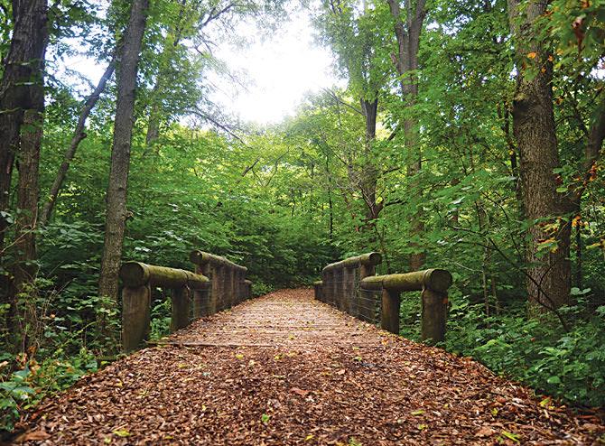 Стиль садового дизайна сада определяется как «Лесной массив и прерия, 20 век»