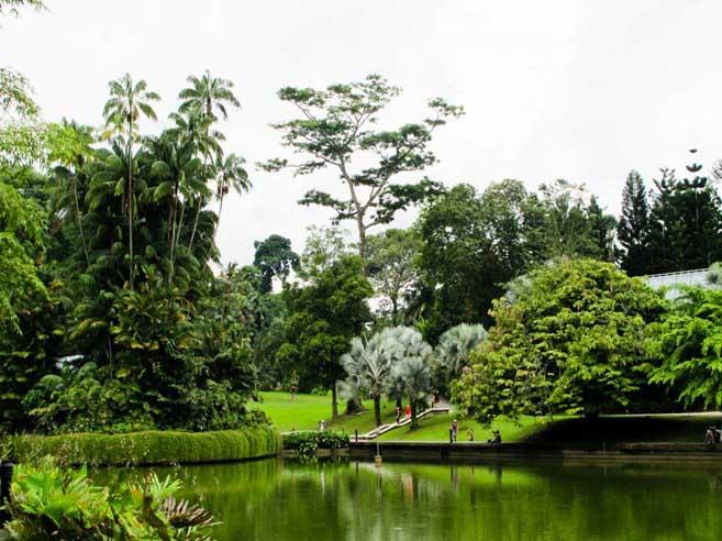 «Сингапурские сады у залива» заслужено стали основной рекреационной зоной для городских жителей