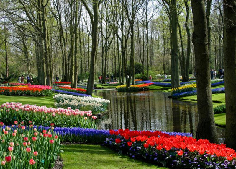 Парк расположился на 8 гектарах. Здесь находятся самые причудливые сочетания различных цветочных растений
