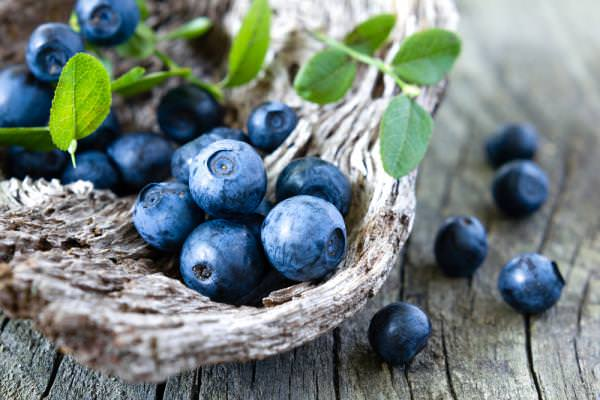 Сбор ягод черники идет довольно длительный срок – со 2 половины июня до середины сентября