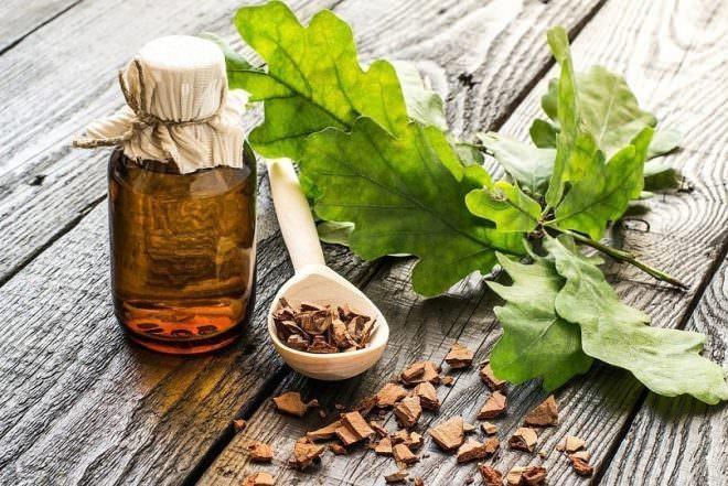 Настои из листьев дуба применяют против рахита, анемических появлений, при заболеваниях неврологического характера, сахарном диабете, полименорее
