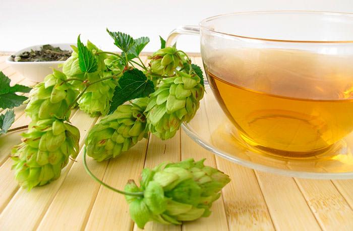 Чай с хмелем имеет множество целебных и лекарственных свойств
