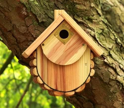 Самый лучший вариант привлечь на приусадебную территорию птиц – сделать скворечник из дерева своими руками
