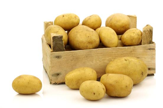 При проращивании картофеля в ящиках подготовка состоит в помещении семенного материала в условия повышенной температуры и влажности