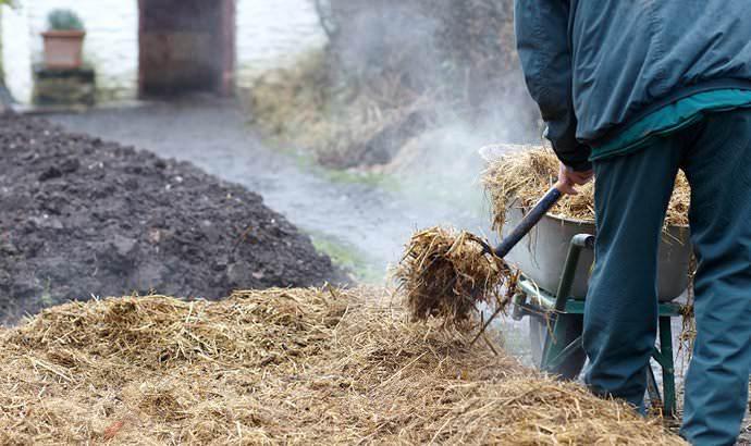 Общая толщина укрытия из сухой травы в течение лета должна составлять порядка 50 см