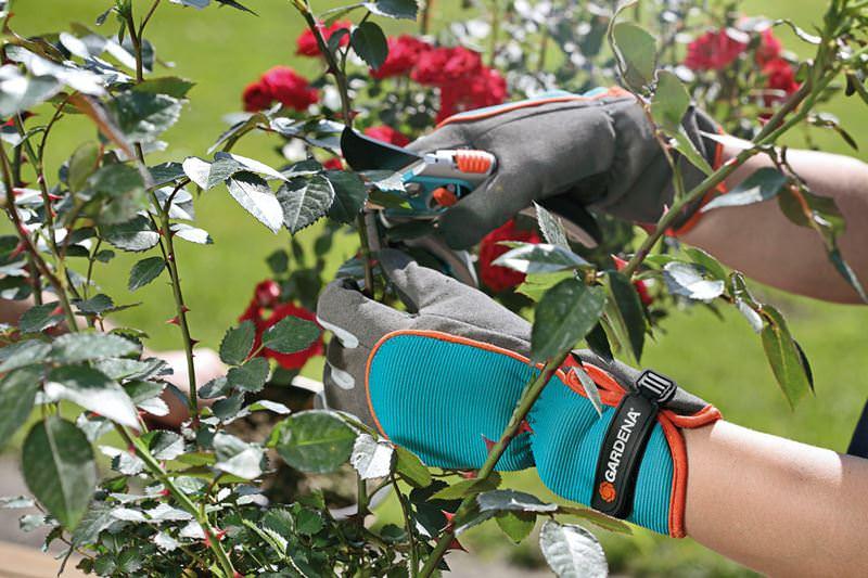 Возможность полезно проводить время в саду, работая с комфортом, не оставляет равнодушным ни одного дачника и цветовода