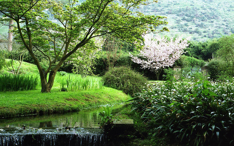 В английском саду собрано более тысячи растений