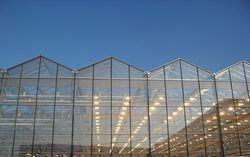Многие дачники хотят выращивать овощи и фрукты на продажу в крупных масштабах и лучше всего для этих целей использовать промышленные теплицы