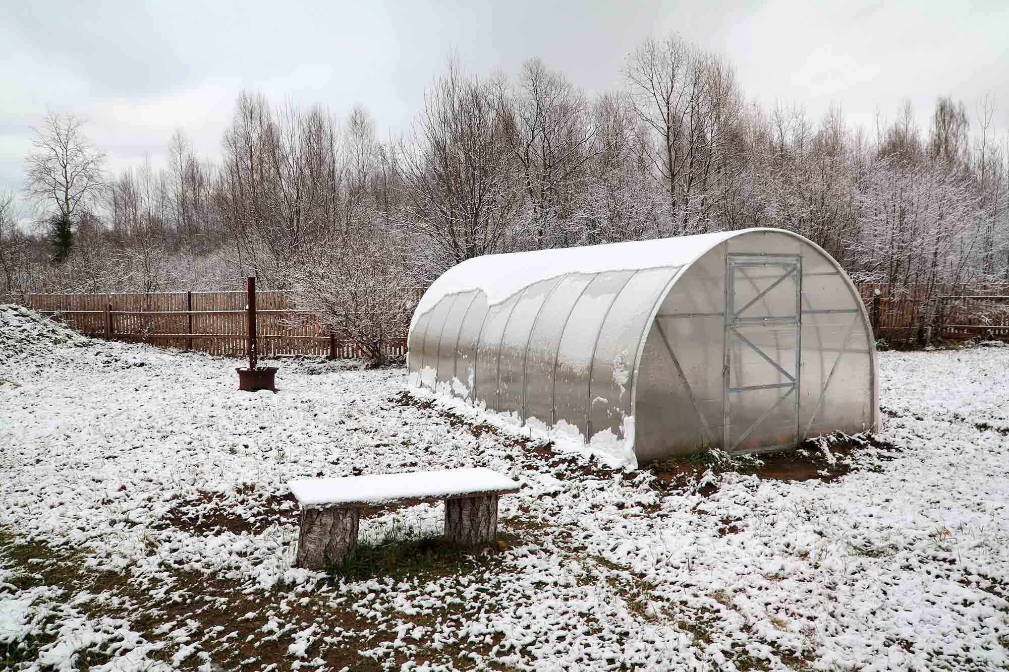 Зимние парники позволяют выращивать растения круглый год