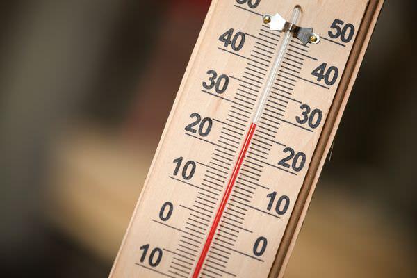 Выращивая рассаду, мы должны отслеживать температуру в том помещении, где происходит данный процесс