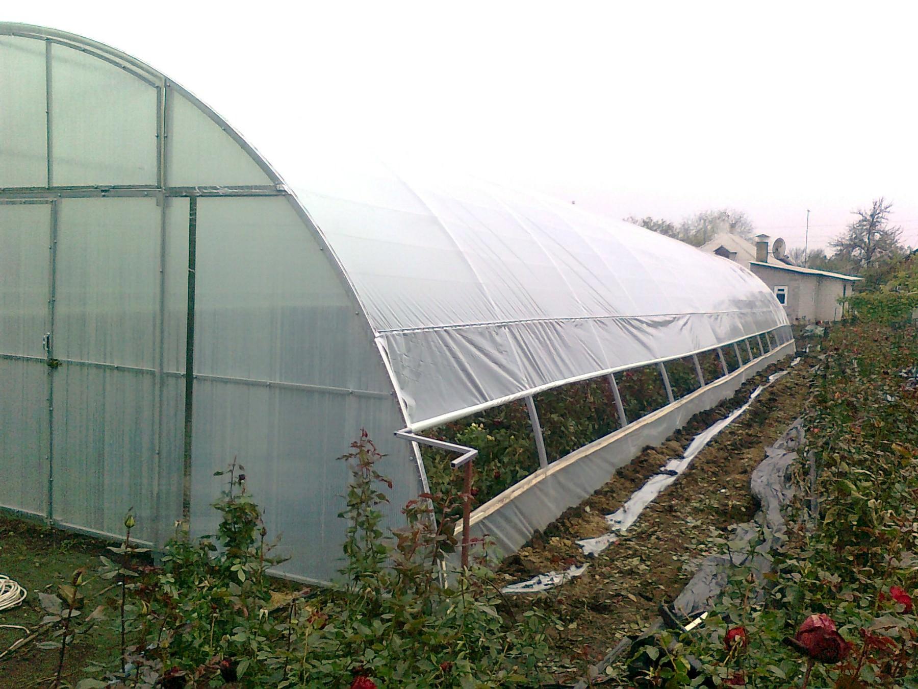 Пленочная теплица – это элементарное строение, которое используется в летнее время для выращивания прихотливых овощей и фруктов
