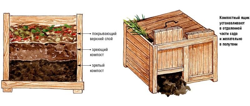Компостная яма на даче – залог щедрого урожая