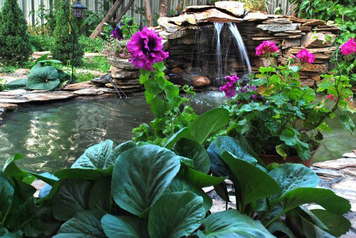 Выкопано своими руками два водоема, ручеек и водопад На одном из водоемов цветут в июне водяные лилии. Очень много флоксов