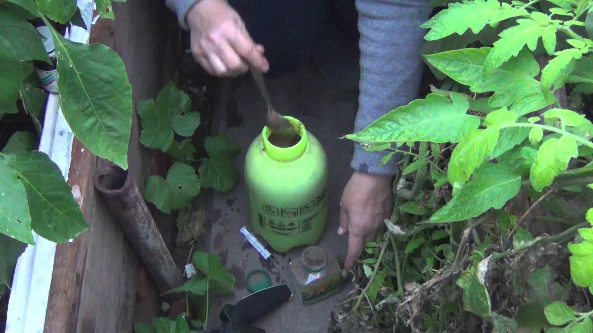 Химические вещества можно использовать, если угрозы попадания на завязь растений не существует