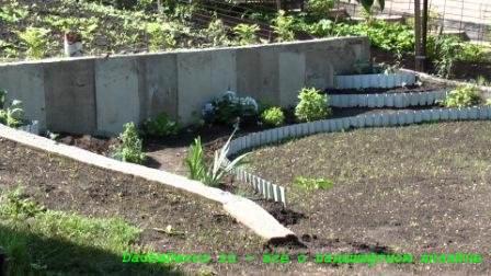 Прогулки по саду наших читателей: сад Надежды Поваляевой (видео и фотоэкскурсия)