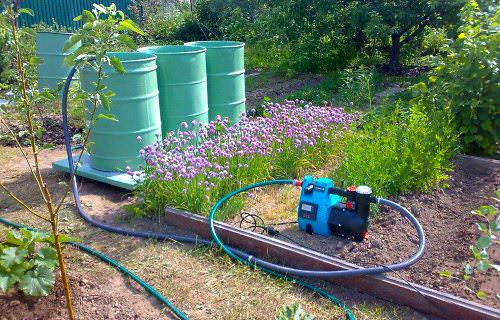 В своей практике садоводы-огородники предпочитают использовать для полива собранную и отстоянную в бочках воду