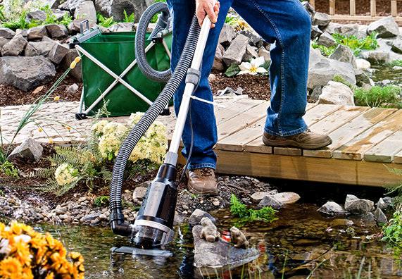 Контроль и очистка водоема – это то, что нужно для поддержания в надлежащем порядке ландшафтного дизайна сада