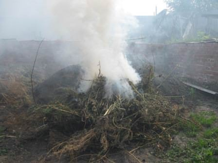 Ненужный мусор — листья и ботву, всегда можно сжечь на территории дачи или за ней