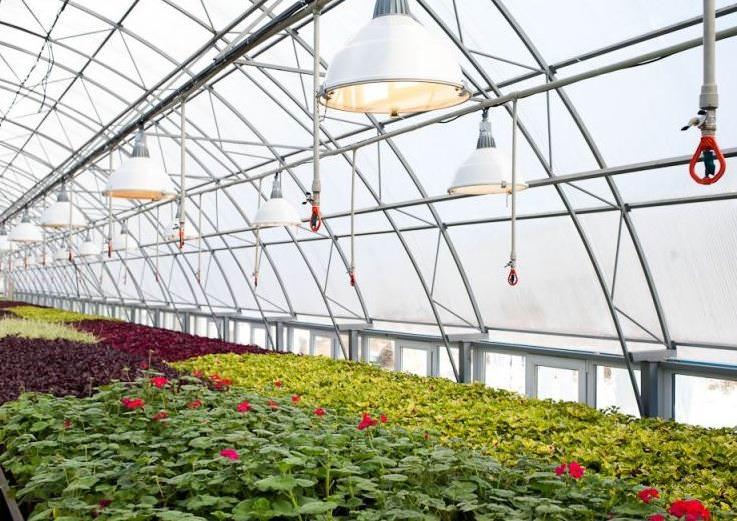Экономичные и очень удобные в эксплуатации лампы, которые подходят для любого периода роста растений