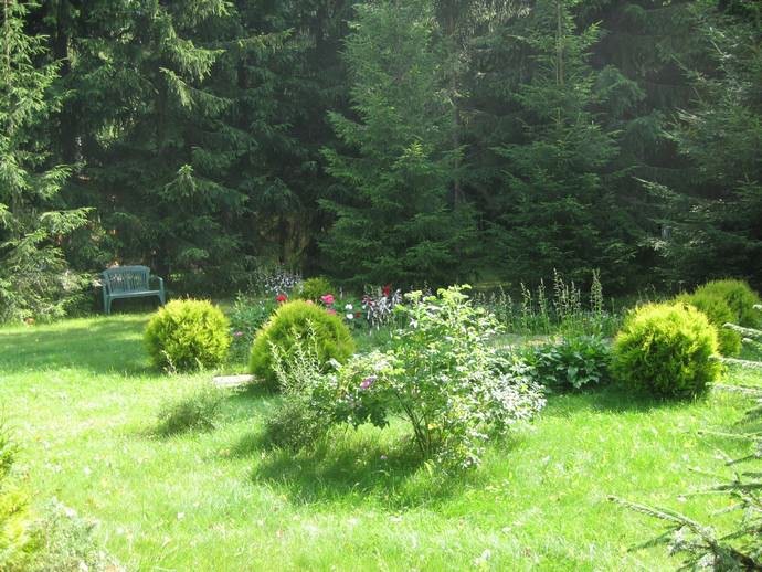 Каждый член семьи находит для себя, чем заняться: кто-то стрижет газон, кто садит цветы, кто поливает
