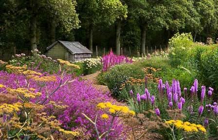 Прерийный сад создается путем совмещения разных растений – злаковых и цветочных
