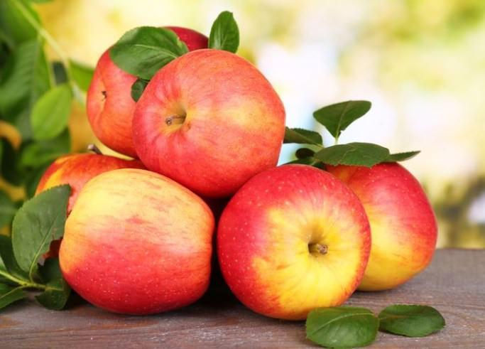 Созревшие яблоки имеют правильную форму, гладкую поверхность и отличаются практически полным отсутствием ребристости