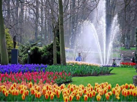 Свежесть садов