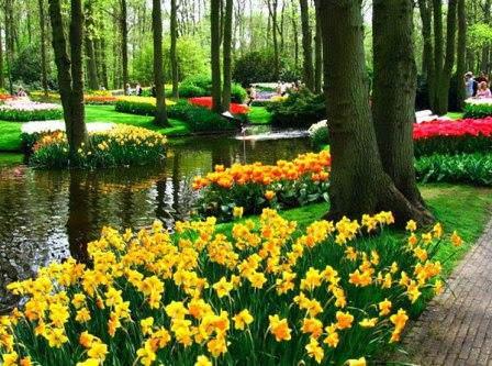 Сады для всех возрастов