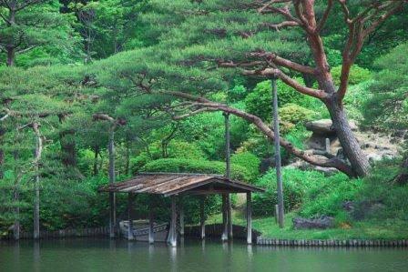 Национальный сад Японии