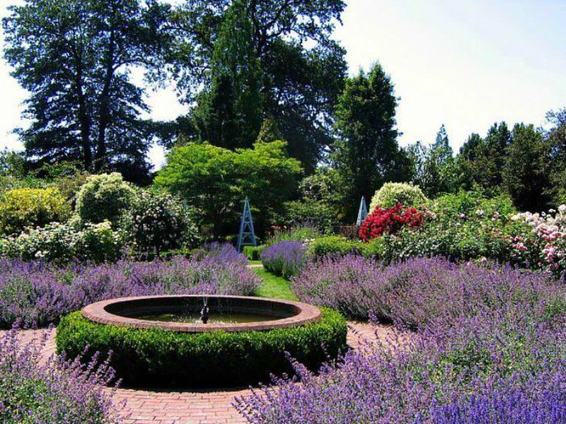Создал удивительный сад полковник Стивенсон Кларк в конце 19 века