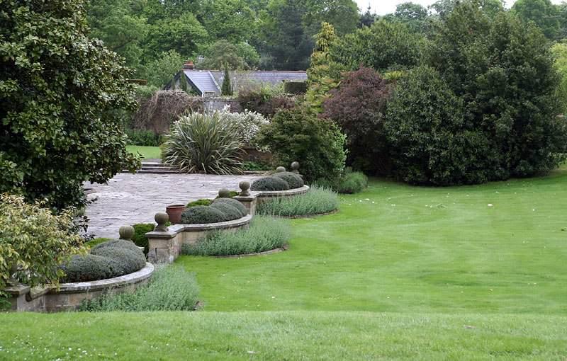 Все желающие могут приобрести растения, которые впоследствии можно будет высадить в своем саду