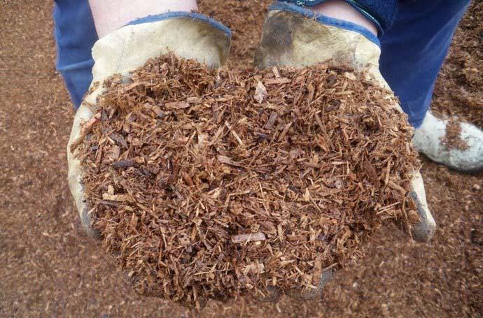 Опытные овощеводы рекомендуют осуществлять процедуру мульчирования тепличного грунта материалами природного происхождения