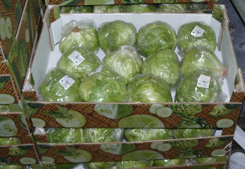 Правильное хранение капусты на зиму и в целом любой овощной культуры зависит от ряда факторов, среди которых стоит выделить этап уборки урожая