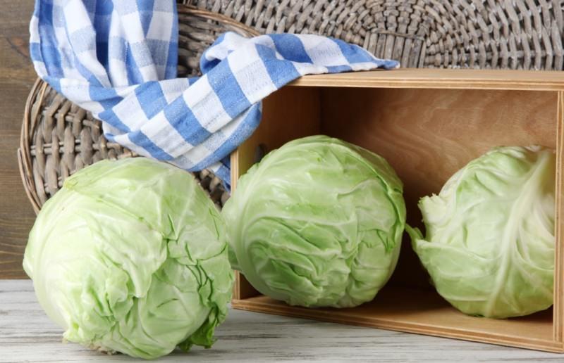 Зимой можно сохранять любые сорта капусты