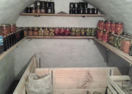 Создаем самые правильные условия хранения овощей и фруктов на даче