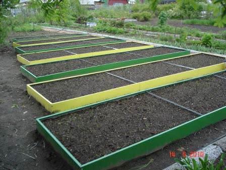 Один из вариантов подготовки высоких огородов на даче к посадке растений