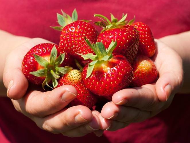 Нужно решить, какого размера клубнику вы хотите вырастить на огороде — крупную или мелкую