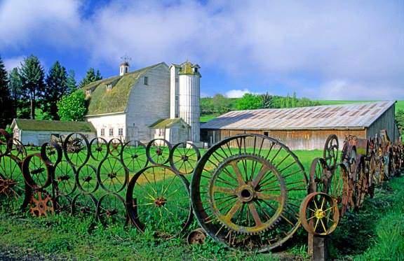 Под любой дачный забор, даже забор из колес, необходимо качественно подготовить территорию