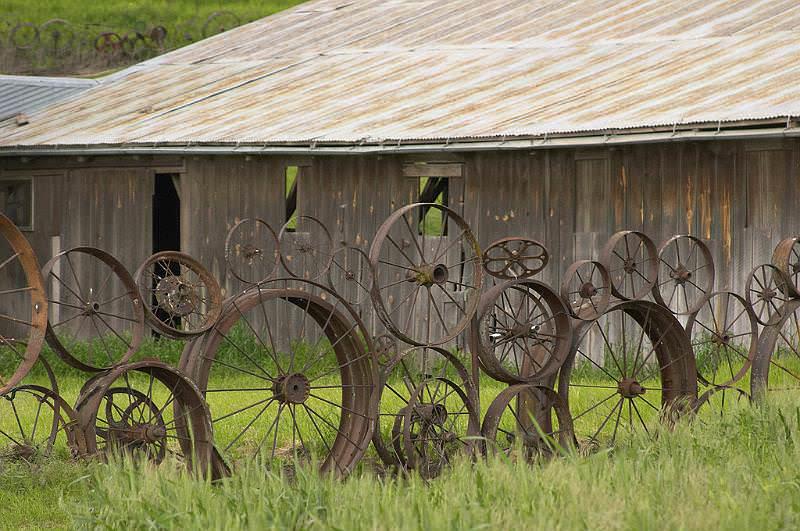 Оригинальный забор из колес на даче может обойтись в копейки