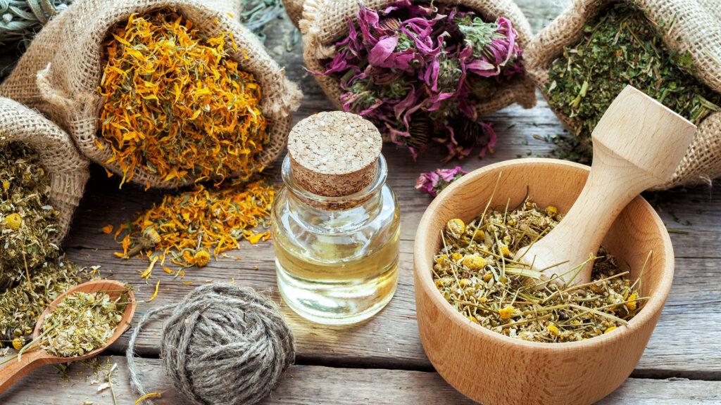 хранение лекарственных трав