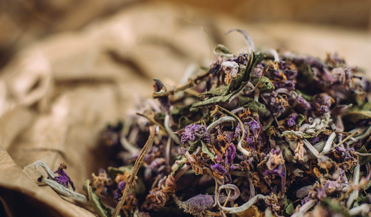 иван-чай польза растения
