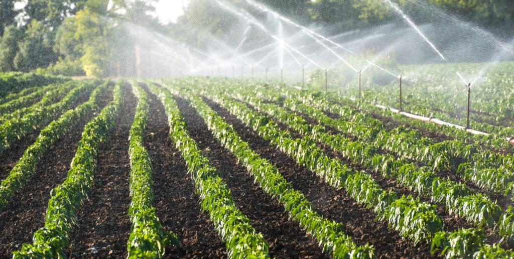 Автоматические системы орошения растений