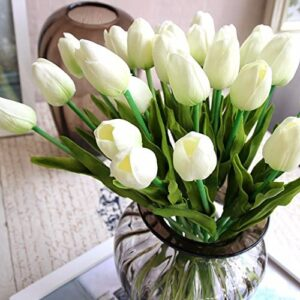 Срезка тюльпанов