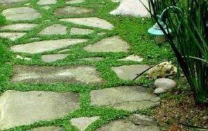 замена газону